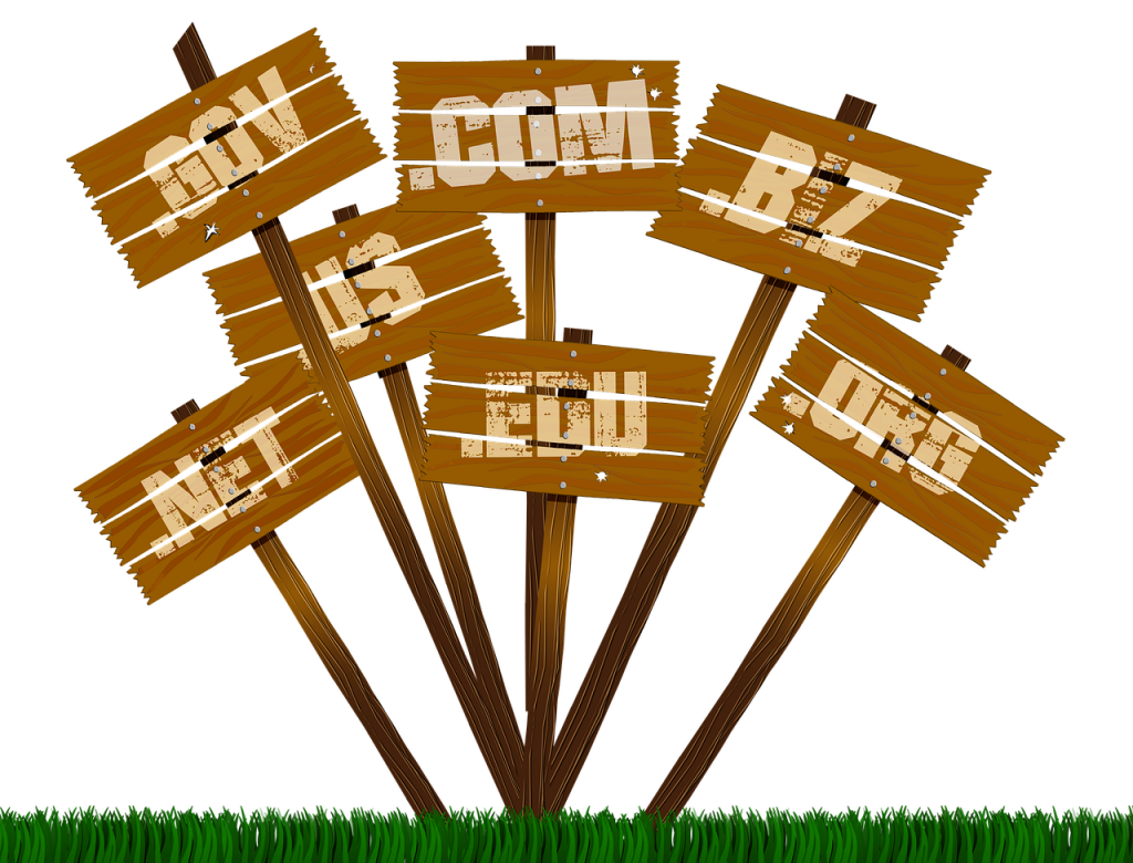 25 Top Level Domains for Sale