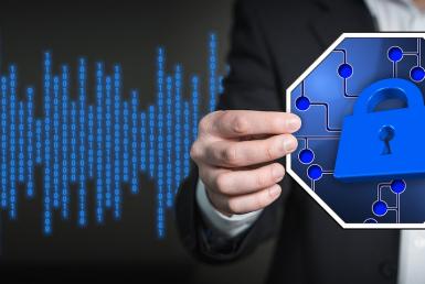 Secure Software Control Vast IoT,